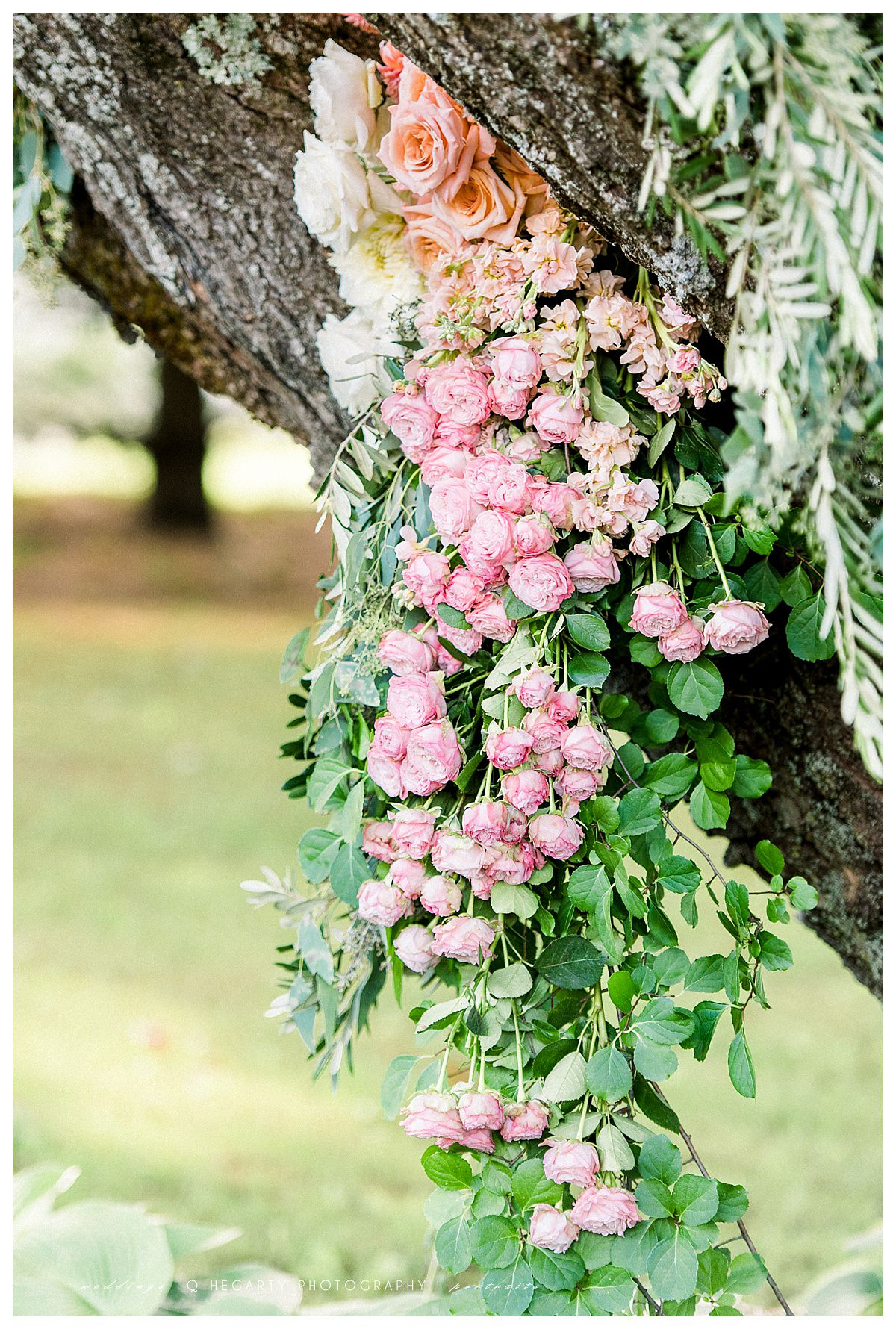 gorgeous clusters of roses for weddings The red barn at outlook farm wedding Q Hegarty Photography